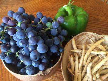 Garden goodies 2015